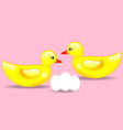 Duck and eggs vector image