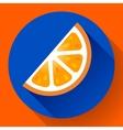 Fruit orange icon flat style vector image