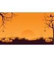 Halloween orange pumpkins vector image