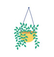 hanging potted plant decoration isolated icon vector image vector image