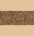 Leopard pattern design