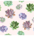 Seamless colorful succulents vector image vector image