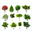 set trees isolated vector image vector image