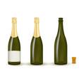 bottles of champagne vector image vector image