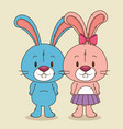 cute and little rabbits couple characters vector image vector image