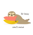 happy sloth having a nap on pillows vector image vector image