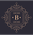 luxury brand logotype with ornaments square logo vector image