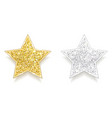 set sparkling gold and silver stars vector image vector image