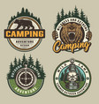 vintage colorful camping badges vector image