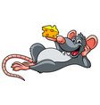 cartoon rat and cheese vector image vector image