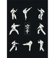 Hieroglyph of karate and men demonstrating karate vector image vector image