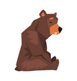 sitting brown grizzly bear wild animal character vector image
