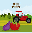colorful poster of organic best food with tractor vector image