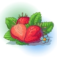 a strawberry with leaves vector image vector image