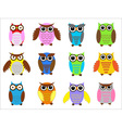 color owls vector image vector image