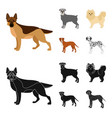 dog breeds cartoonblack icons in set collection vector image