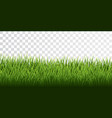 green grass border set on transparent background vector image vector image