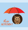 hedgehog with umbrella vector image