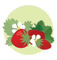 Set of berries and leaves of wild strawberry vector image