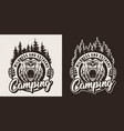 vintage monochrome camping season logotype vector image vector image