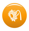 beautiful sunflower icon orange vector image