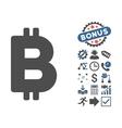 Bitcoin Flat Icon With Bonus vector image