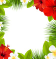Tropical Border vector image vector image