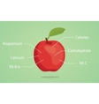 apple nutrition with list of vector image