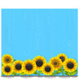 blue wooden board with sunflowers vector image vector image