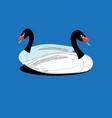 enamored white swans vector image