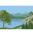 Landscape with Trees and Mountain Lake vector image