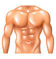 muscular man torso fitness concept isolated vector image vector image