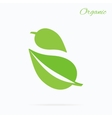 Organic Logo Green Leaf Design Flat vector image vector image