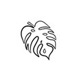 palm leaf hand drawn sketch icon vector image vector image