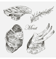 steak meat hand drawing with pepper and vector image
