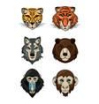 wild animals heads cartoon vector image