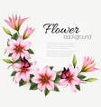 beautiful nature flower background with a pink vector image vector image