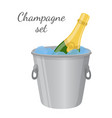 champagne in ice bucket cartoon flat style vector image