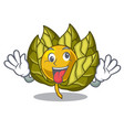 crazy physalis fruit in the cartoon shape vector image vector image
