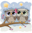 cute owls is sitting on a branch vector image vector image