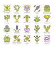 desert plants color icons set exotic flora vector image