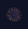 fireworks with bright star lights for party vector image vector image