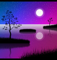 night sky at lake with full moon and stars vector image vector image