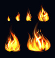 realistic 3d detailed fire flame set vector image vector image