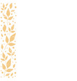 white background with stripe of orange leaves vector image