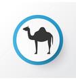 camel icon symbol premium quality isolated animal vector image