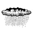 cartoon image of rain icon cloud rain symbol vector image
