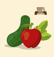 colorful poster of organic best food with cucumber vector image vector image