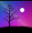 night starry sky with tree and grass vector image vector image