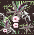 seamless pattern with exotic tropical plants vector image vector image